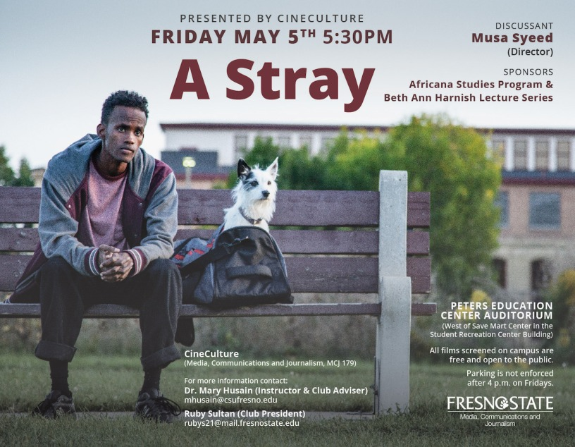 "Poster for movie ""A Stray"""