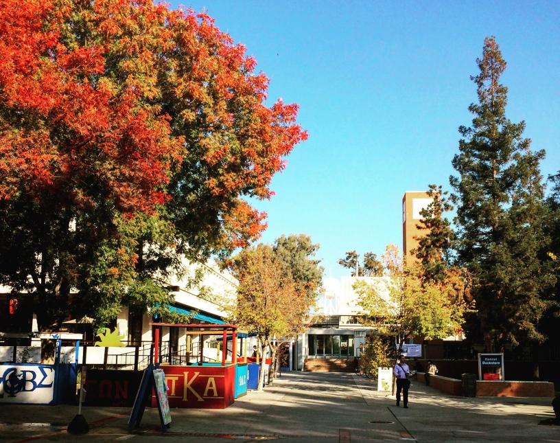 Autumn at Fresno State