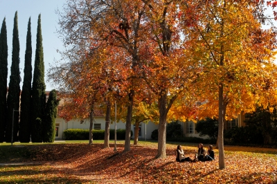 Fall trees by the music building