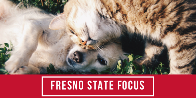 Fresno State Focus looks at pet adoption near the holidays