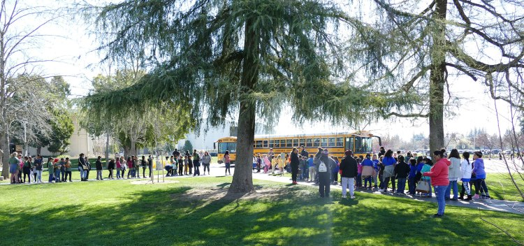 Students line up for buses at the 2019 Peach Blossom Festival