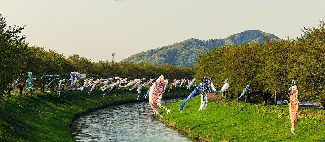 Echizen, Japan by Todd Sharp