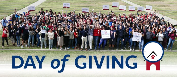 2018 Day of Giving Big Picture