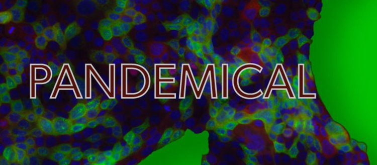 Pandemical word over an abstract green and blue background.