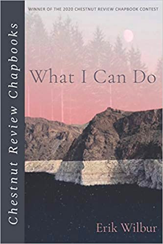 """What I Can Do,"" by Erik J. Wilbur - Book Cover"