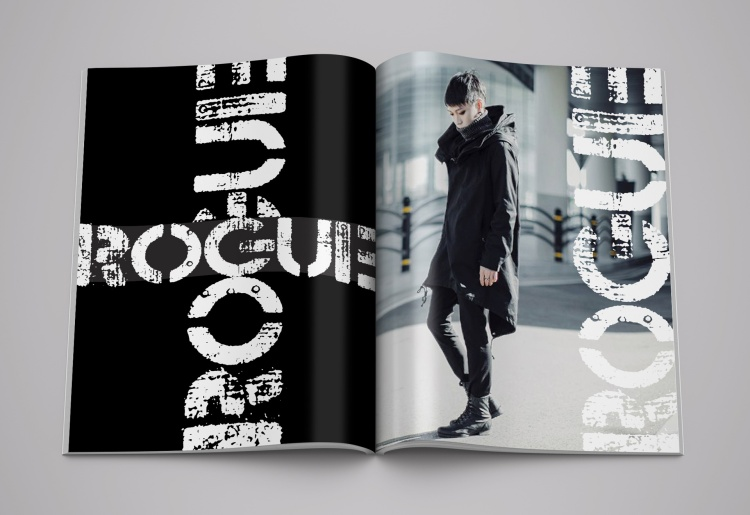 Print Advertising – Magazine Advertising - Campaign Gold – Rogue Clothing Line Ad Campaign Jeff Vinogradoff